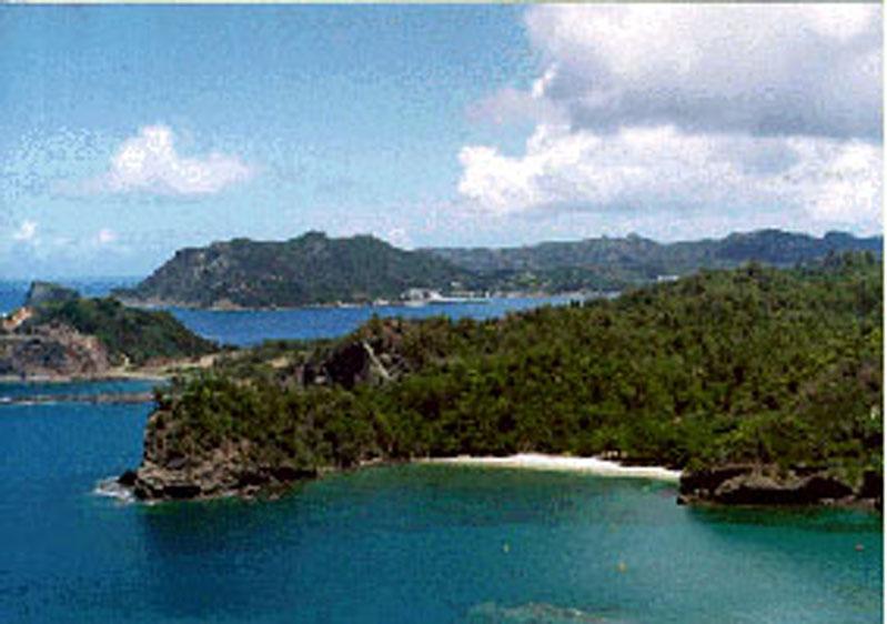 小笠原諸島の画像 p1_18